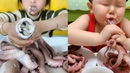 【OCTOPUS CHALLENGE】CHINA MUKBANG ASMR KIDS OCTOPUS EATING SHOW COMPILATION V3-ASMR MUKBANG