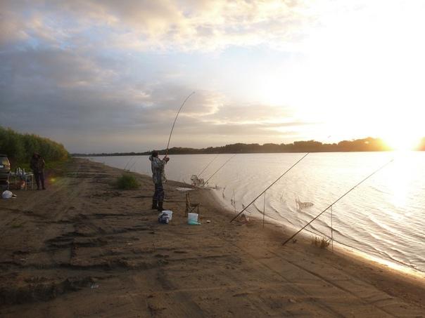 Товары для рыбалки в Муромском районе