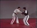Хапкидо Прикладная Техника - Фариборз Ажах - Hapkido Applied Technique