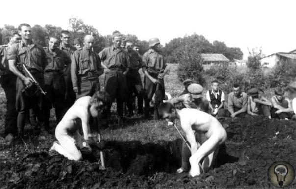 Копание могил, Воронежская область, деревня Полниково, 1942 год.