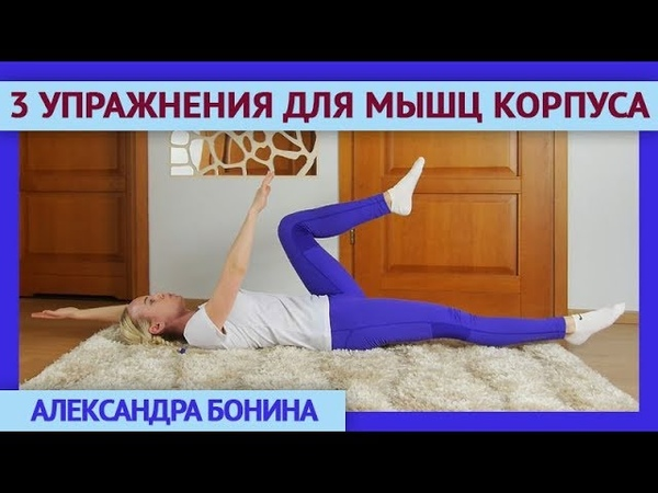 ►3 базовых упражнения на УКРЕПЛЕНИЕ МЫШЕЧНОГО КОРСЕТА. ЛФК для позвоночника.