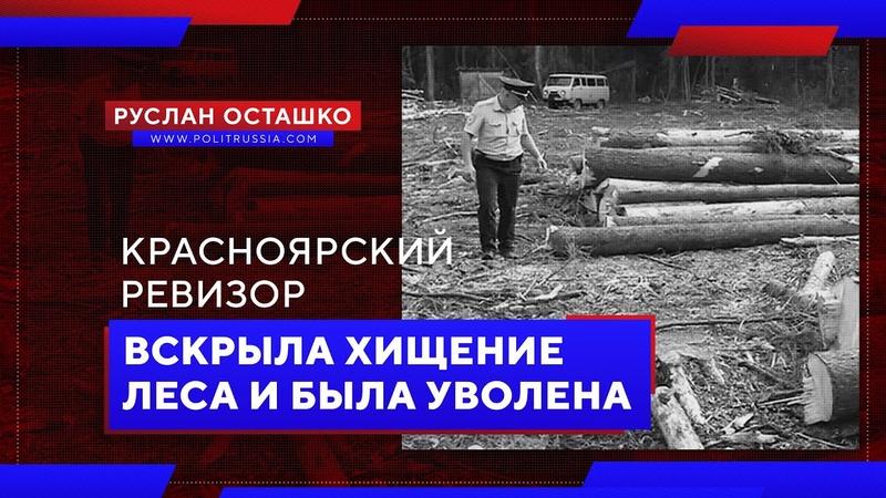 Красноярский ревизор вскрыла хищение леса и была уволена (Руслан Осташко)