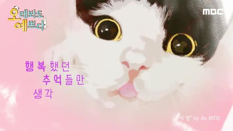 [티저] 반려동물 예능 오래봐도예쁘다 - 오래 봐도 예쁜 댕댕이들, 냥냥이들을 - 더 예쁘게 키우기 위한 스타들의 나 자신 검증 프로그램! - - 송은이 박준형