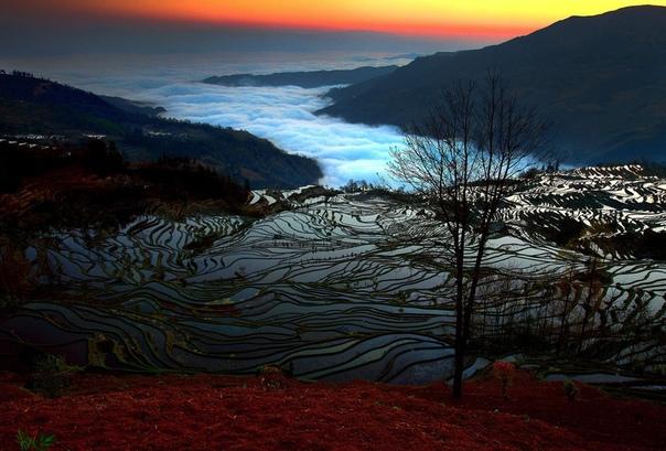 Китайские рисовые террасы Юаньян.