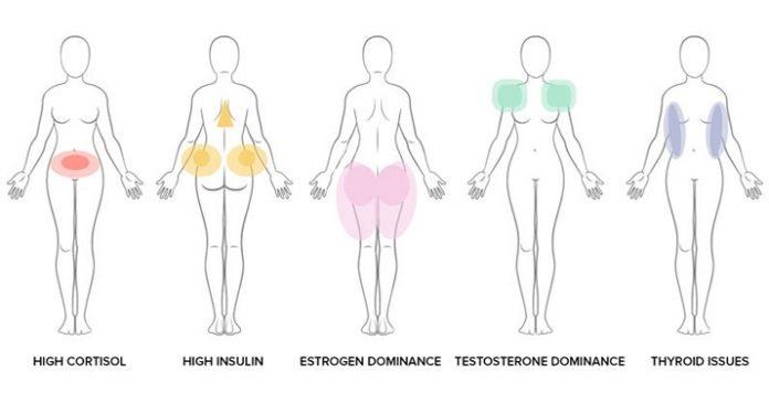 Какие гормоны отвечают за лишний вес у женщин и что с ними делать