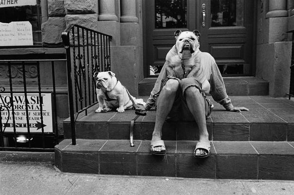 Нью-Йорк, 1988 год