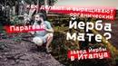 Парагвай Как делают ЙЕРБА МАТЕ Завод мате и органические плантации