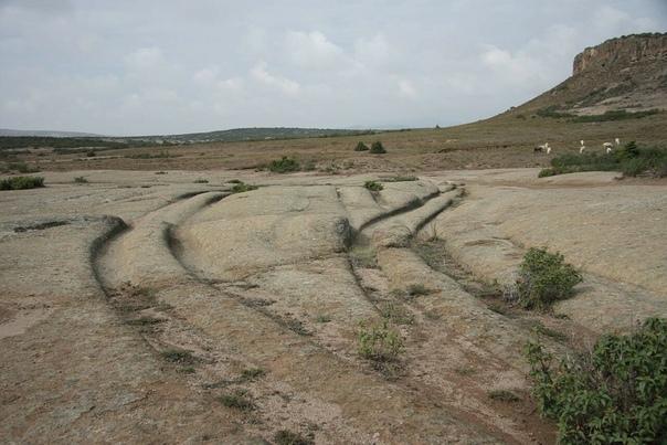Загадки следов «древних вездеходов» На нашей планете много мест, которые либо не достаточно изучены, либо представляют собой сложные и странные сведения, явления, вокруг которых ведутся споры