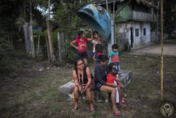 Вождь со смартфоном: быт бразильского племени тэмбе между традициями и современностью Ч.-1Индейцы племени тэмбе в Бразилии носят пестрые головные уборы из перьев и листьев, защищают свои земли и