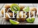 Как выращивают и собирают киви How is harvesting kiwi