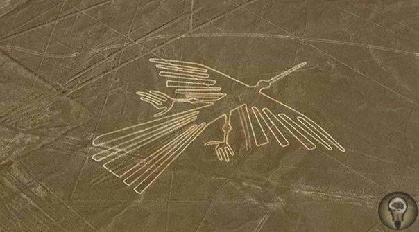 Новое исследование изображений птиц на таинственных линиях Наска в Перу Серия огромных геоглифов запечатленных на плато в перуанской пустыни, протянувшемся более чем на 50 километров с севера на