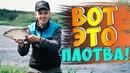 Вот такая ПЛОТВА здесь клюет Ловля ПОДЛЕЩА и ПЛОТВЫ на Восточной Березине Беларусь