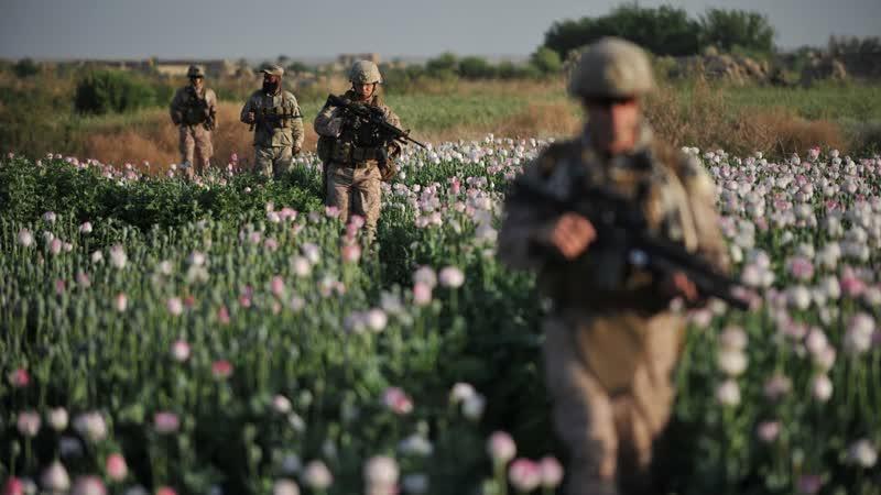 Война на уничтожение Как мир борется с наркомафией