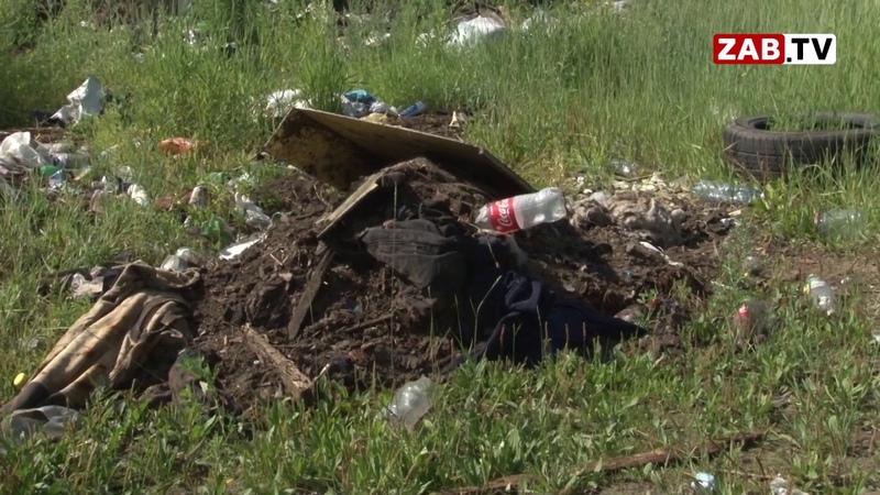 Убирать стихийные свалки в Чите помогают юные добровольцы