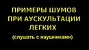 Шумы при аускультации легких (в наушниках) © Auscultation of the lungs, мain and side noise