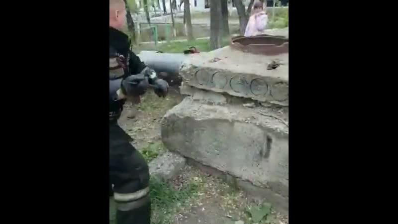 В Приморском крае работники МЧС остановились чтобы спасти мохнатую жизнь