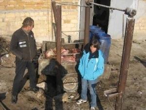 В Крыму воруют лошадей  конезаводчики нашли бойню с палеными шкурами и скелетами