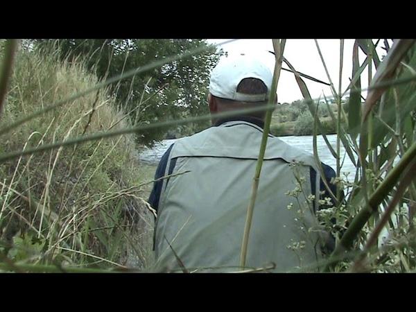 Рыбалка на реке Егорлык сход сома Видео с канала Просто так рыбалка