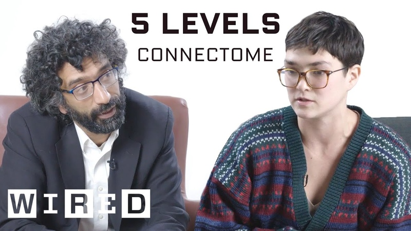 Neuroscientist Explains One Concept in 5 Levels of Difficulty | WIRED