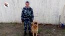 Пес Рэй унюхал мобилы для осужденных ИК 63 Сюжет ТАУ Иннокентия Шеремета