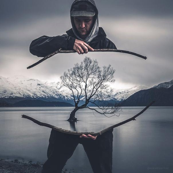 Другой взгляд на самое популярное и часто фотографируемое дерево Новой Зеландии