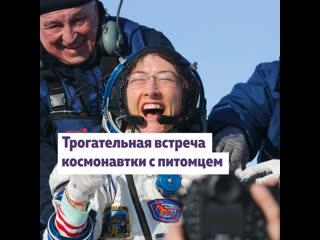 Год в космосе: трогательное видео встречи с собакой показала астронавт Кристина Кук