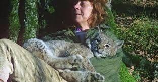 Симона Коссак Ее называли «ведьмой», потому что она разговаривала с животными и завела себе ворона-террориста, который воровал золото и нападал на велосипедистов. Более тридцати лет она прожила