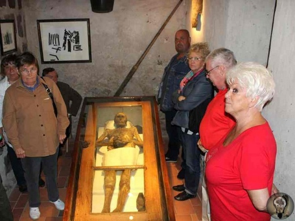 Мистическая история мумии рыцаря фон Кальбутц из Кампеля