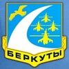 Пилотажная группа Беркуты