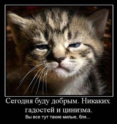 Игорь Родионов, 21 июня 1964, Королев, id50667809