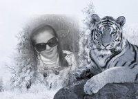 Алена Бурдина, 20 декабря 1997, Днепропетровск, id85009042