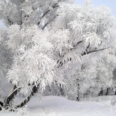 Зима Зима, 7 сентября , Калининград, id115240513