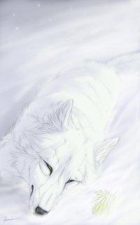 Teodor Furry-wolf, 23 мая 1986, Санкт-Петербург, id99801690