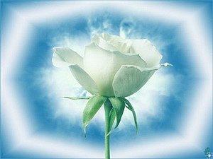 http://cs876.vkontakte.ru/u7038385/110365902/x_726e03ea.jpg