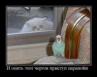 Sad Clown, Санкт-Петербург, id105726451