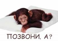 Владимир Οгурцов, 26 декабря , Донецк, id120585761
