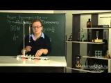 20) Тема 3: Взаимодействие тел. Урок 20. Единицы силы. Динамометр (Физика 7 класс)