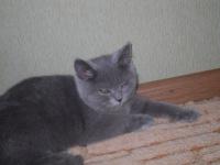 Валерия Ильина, 6 июня 1989, Москва, id115240558