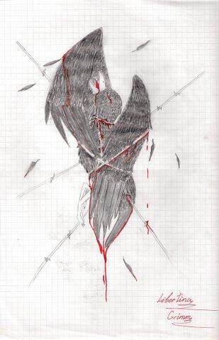 http://cs915.vkontakte.ru/u16965391/109461130/x_8b3ab204.jpg