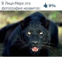 Вера Климова, 21 февраля , Днепропетровск, id104257284