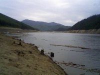 Дождик Животное, 30 июня , Красноярск, id63715052