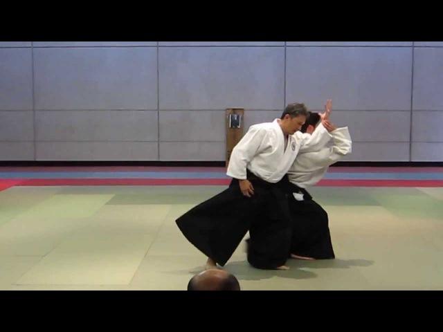 Aikido Shinju-Kai (nikkyo, positive and negative entering )
