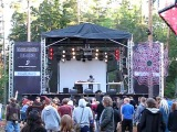 KONEMETSÄ 2009 - Merv Pepler
