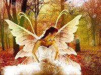 Angel Adely, 5 декабря , Казань, id67148810
