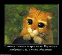 Andrei Andreew, 24 сентября , Санкт-Петербург, id109525158