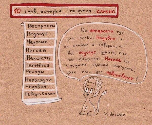 правила орфографии в схемах