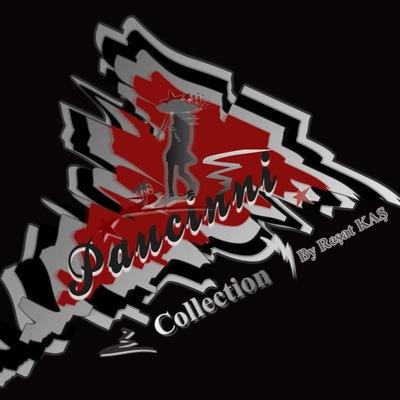 Paucinni Collection, 25 декабря , Запорожье, id212049484