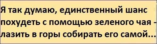 http://cs9222.vk.me/v9222271/545/6S5udERVT1U.jpg