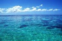 Так, температурные показатели воды в мировом океане бьют в этом году все рекорды.