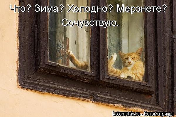 http://cs9224.vkontakte.ru/u692844/103148244/x_17b189ec.jpg